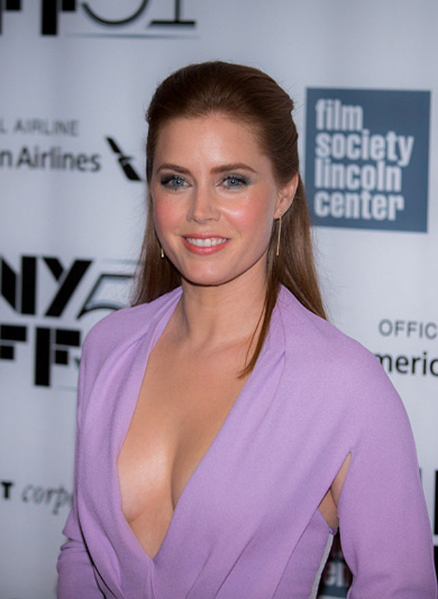 Amy Adams Gives First Class Seat to US Soldier
