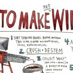 Check out how to make your own perfect wine…