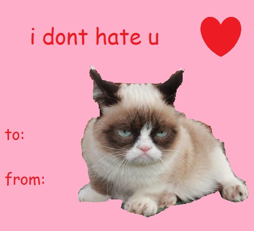 adorable cat themed valentines day cards - Grumpy Cat Valentine
