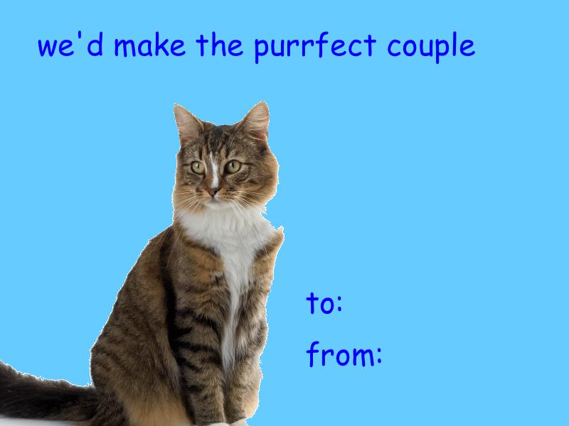 photo pinterestcom - Cat Valentine Cards