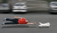 Puppy leash training