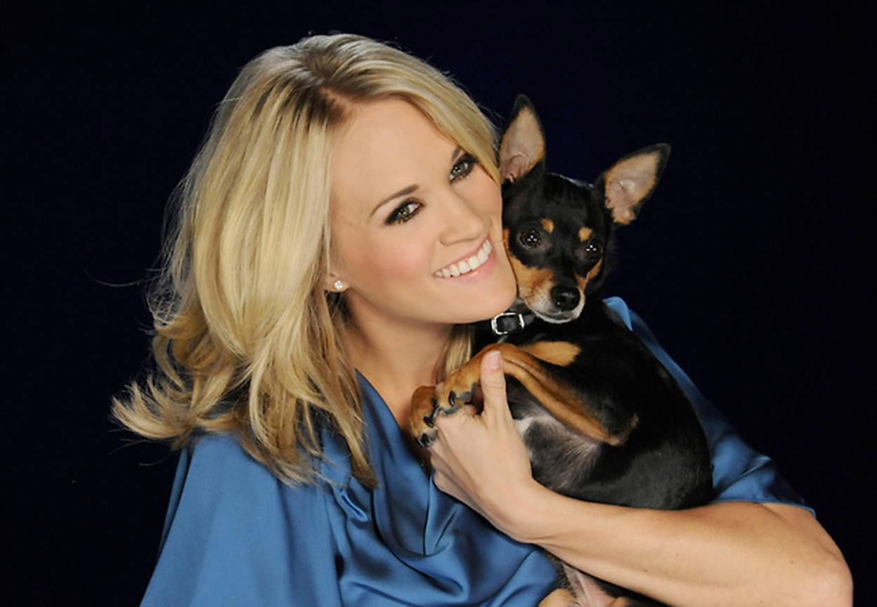 carrie underwood dog