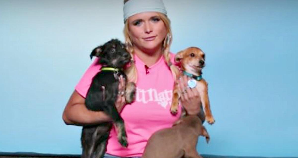 Miranda Lambert with rescue puppies