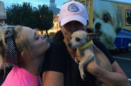 Miranda Lambert saves dozens of animals after Hurricane Harvey