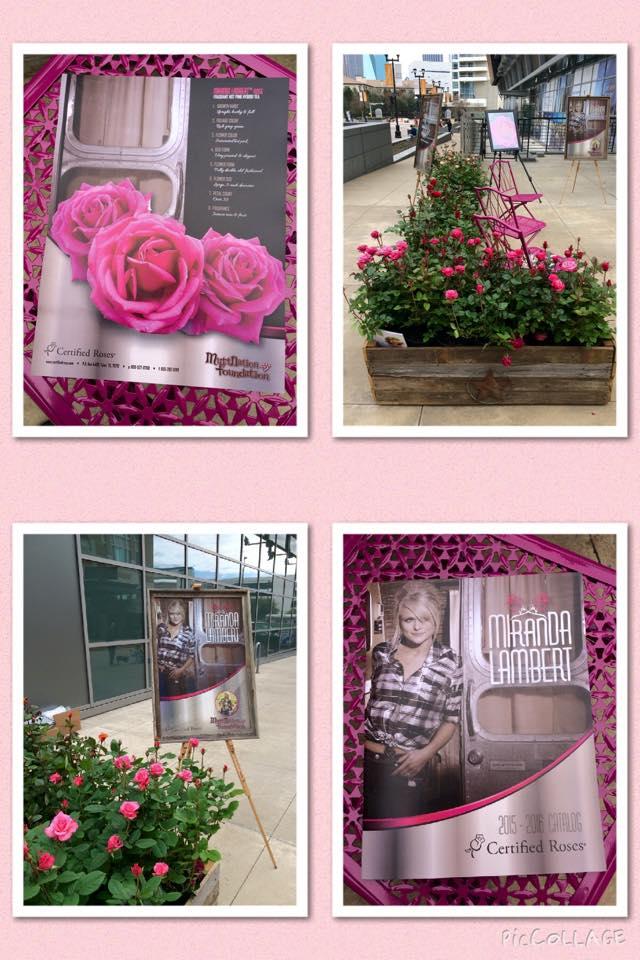 See The Rose That Will Help Miranda Lambert Save Animals