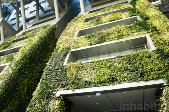 Check out an amazing article about Seoul's City Hall sprawling indoor green wall that's so big it set a Guinness World Record as the