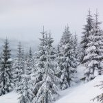 winter noises