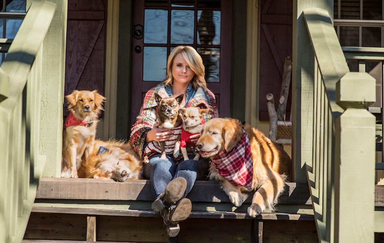miranda lambert animal shelters