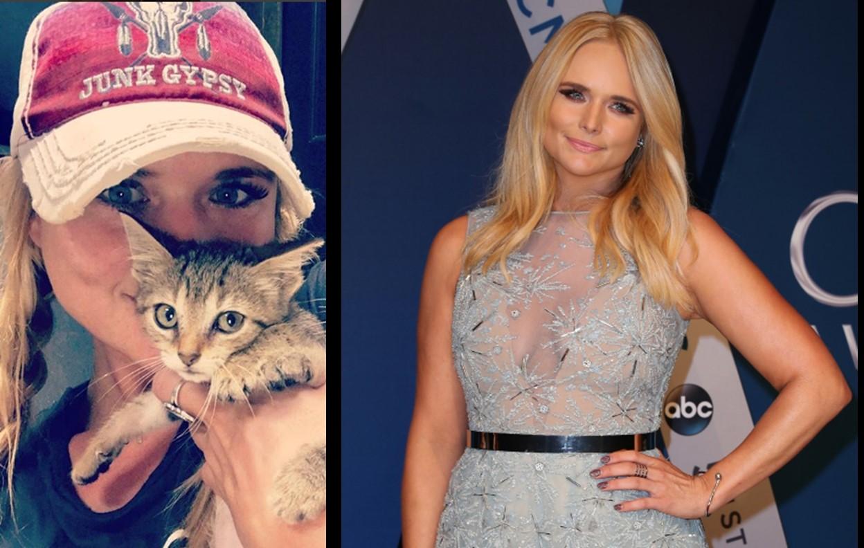 Miranda Lambert Adds Two Rescue Kittens To Her Family