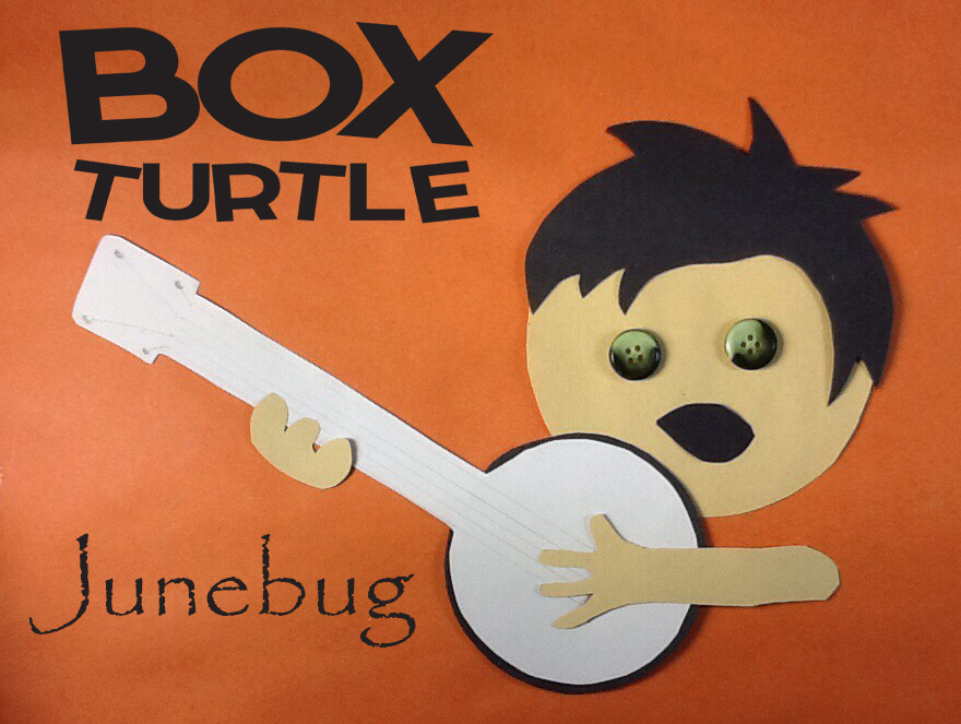 Box Turtle Junebug
