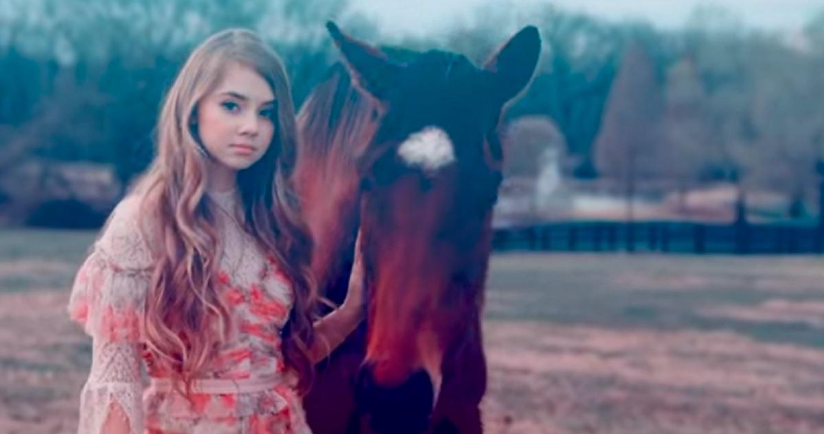 Tegan Marie Horses
