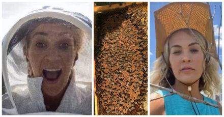 Carrie Underwood Beekeeper