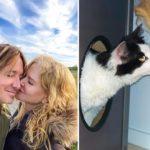Nicole Kidman's cats
